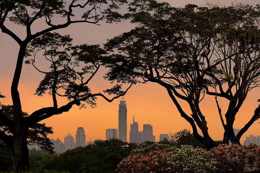 Makati Skyline, Manila Philippines