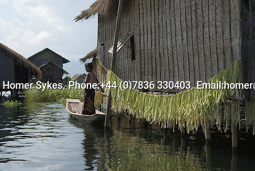 Inle Lake. Myanmar (Burma.) 2006. Housing on stilts, woman in flat bottomed boat tending her vegetables that have been hung out to sun dry.
