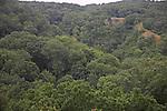Ebbor gorge, Somerset, England