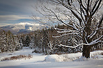 Mount LaFayette, White Mountain National Forest, NH