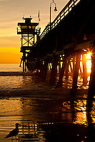 A Peaceful Sunset Under The San Clemente Pier