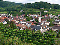 Germany, DEU, Baden-Wurttemberg, Vogtsburg-Bickensohl, 2010Jul28: The vine village of Bickensohl at the Kaiserstuhl hills.