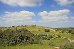 Israel, Shephelah, Hurvat Burgin in Park Adulam
