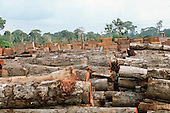 Juruena, Mato Grosso State, Brazil. Sawmill yard full of tree trunks with stacks of sawn timber behind.