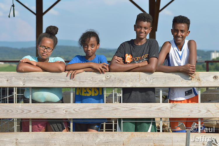 Resettled refugee youth from Eritrea and Ethiopia pose on a farm in Linville, Virginia, on July 17, 2017. The youth are preparing to show sheep and goats in a county fair. <br /> <br /> They and other refugees were resettled in the Harrisonburg, Virginia, area by Church World Service. <br /> <br /> Photo by Paul Jeffrey for Church World Service.