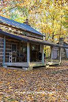 63895-16417 Cabin at Log Cabin Village in fall Kinmundy IL