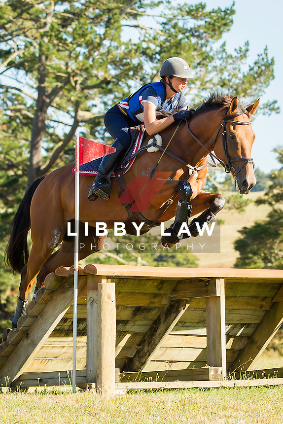 NZL-Samantha Felton (RICKER RIDGE RODSTAR) FINAL-15TH: BNZ BANKING CNC105: 2014 NZL-Troy Wheeler Contracting Springbush Horse Trial (Sunday 16 February) CREDIT: Libby Law COPYRIGHT: LIBBY LAW PHOTOGRAPHY - NZL