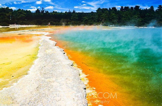 Champagne Pool in Wai-O-Tapu Thermal Reserve - Rotorua, New Zealand