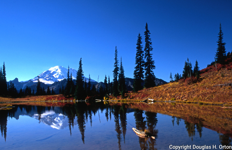 Mt. Rainier reflected in pond at Chinook Pass, Washington, Mt. Rainier National Park.