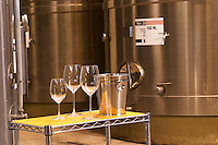 stainless steel tanks. wine tasting glasses ice bucket spittoon Bodega Del Anelo Winery, also called Finca Roja, Anelo Region, Neuquen, Patagonia, Argentina, South America