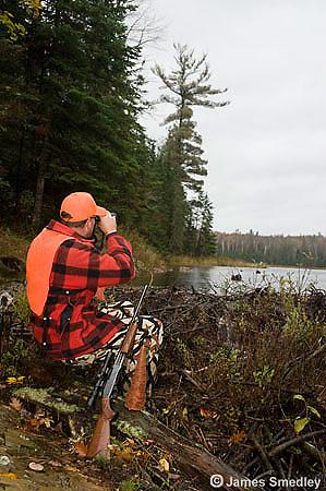 Man hunting for moose