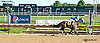 Lil Escape Artist winning at Delaware Park on 9/18/13
