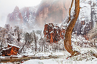 Winter at the Alter and the Pulpit in Zion National Park and the Temple of Sinawava and the Virgin River winding through them. Both the Temple of Sinawava and the Pulpit are found at the farthest end of Zion Canyon.