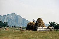 Bulgarien, Berge bei Vraza, Heuernte