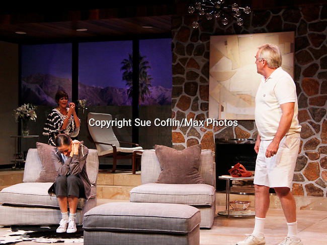 "Colleen Zenk, Brenda Withers,  Malachy Cleary star in ""Other Desert Cities"" at the tech rehearsal (in costume) on October 14, 2015 at Whippoorwill Halll Theatre, North Castle Library, Kent Place, Armonk, New York.  (Photo by Sue Coflin/Max Photos)"