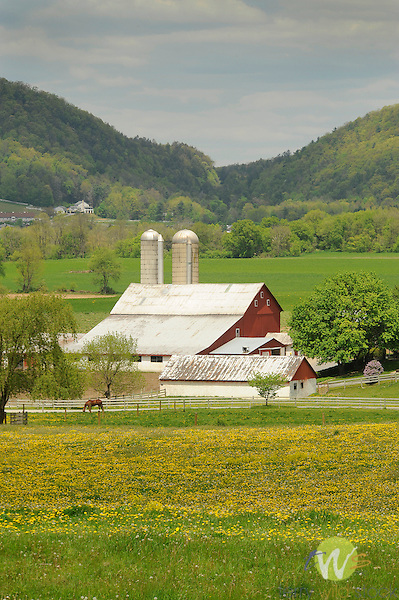Spring farmscape, Route 880, Sugar Valley, PA.