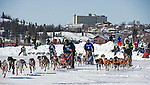 Canadian Championship Dog Derby 2014