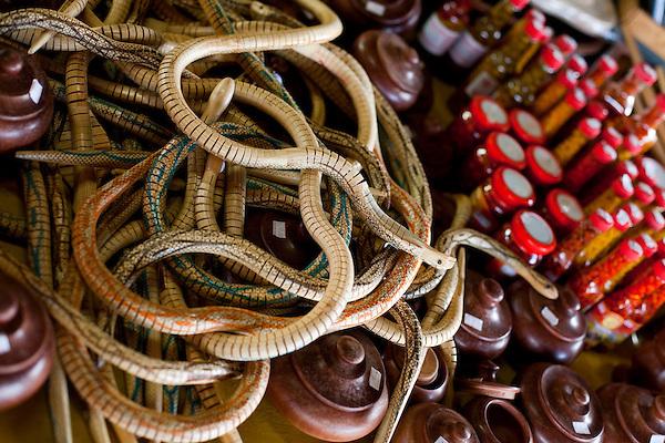 Nepomuceno_MG, Brasil...Cobras de brinquedo em um comercio em Nepucemo...Snakes toy on a trade in Nepucemo...Foto: LEO DRUMOND / NITRO
