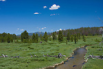 A stream through a high mountain meadow on a sunny summer day with a rustic log fence that breaks at the stream. Near Stanley, Idaho, USA