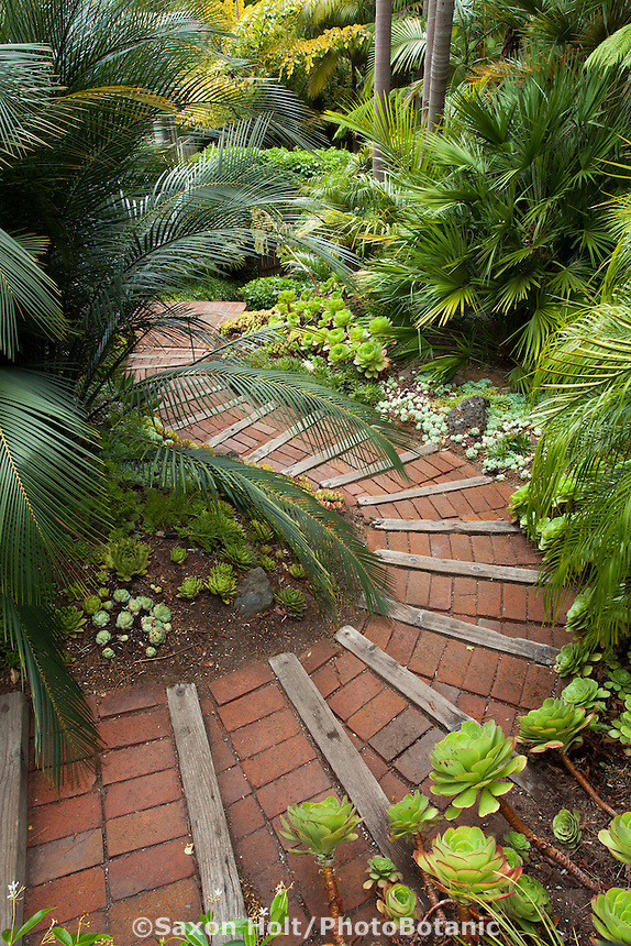 Brick path steps down through Worth tropical foliage garden on California hillside