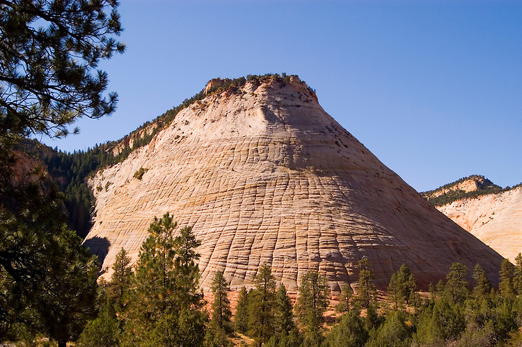 Zion National Park, Utah, UT, Checkerboard Mesa rock formation, landform, Southwest America, American Southwest, US, United States, Image ut374-18214, Photo copyright: Lee Foster, www.fostertravel.com, lee@fostertravel.com, 510-549-2202