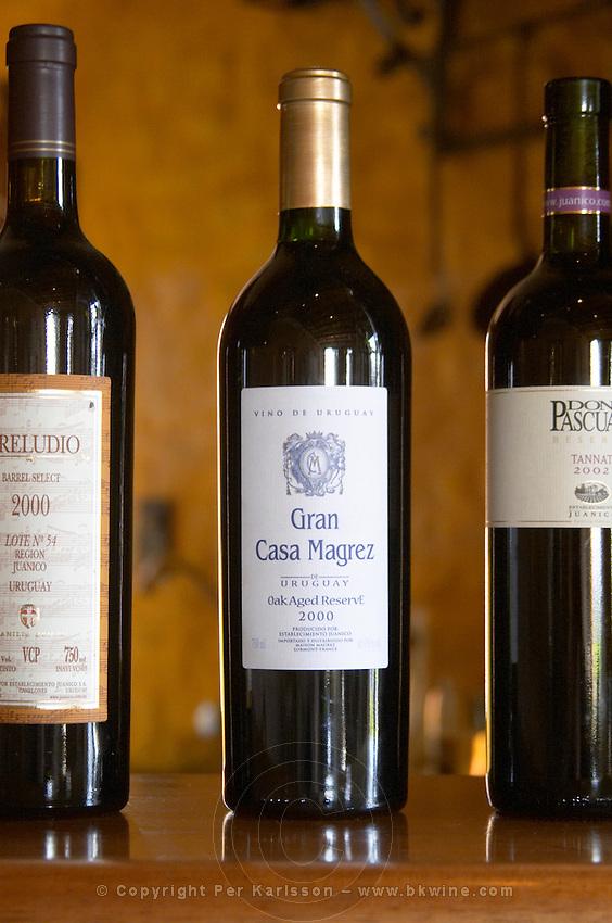 Bottle of Gran Casa Magrez Oak Aged Reserve 2000 Bodega Juanico Familia Deicas Winery, Juanico, Canelones, Uruguay, South America