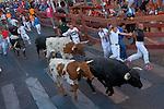 Participants run in front of Castillejo de Huebra's bulls during the bull run of the San Sebastian de los Reyes Festival, near Madrid, on august 30, 2014. © Pedro ARMESTRE