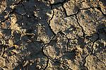 ©Paul Trummer, Mauren / FL, www.travel-lightart.com, Andalucia, Andalusia, Arcos, Arcos de la Frontera, Cadiz, Europe, Geography, Spain, Andalusien, Europa, Geografie, Spanien, Dreck, Erdboden, Erde, Erdklumpen, Material, Materialien, Sode, earth, materials, soil, Dürre, Dürren, heiss, Hitze, Trockenheit, Umwelt, aridities, aridity, drought, droughts, dryness, environment, environmental issues, heat, Leanness, leannesses