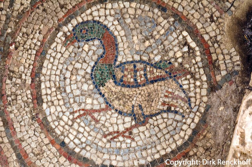 Nordzypern, Soli (Soloi), Mosaik in der byzantinischen  Basilika 4.-6. Jahrhundert