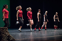 "Irish & tap dancers ""dueted"" with their unique styles of dance.<br /> Occidental College students perform and compete during Apollo Night, one of Oxy's biggest talent showcases, on Feb. 24, 2017 in Thorne Hall. Sponsored by ASOC and hosted by the Black Student Alliance as part of Black History Month.<br /> (Photo by Marc Campos, Occidental College Photographer)"