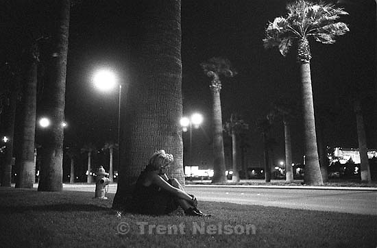 Frieda Mansfield and palm trees at night.<br />