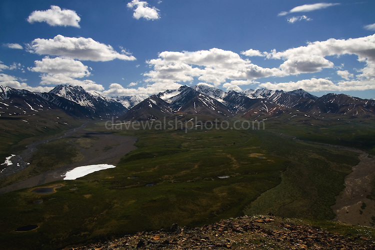 The Plains of Murie, Denali National Park, Alaska, seen from Polychrome Mountain