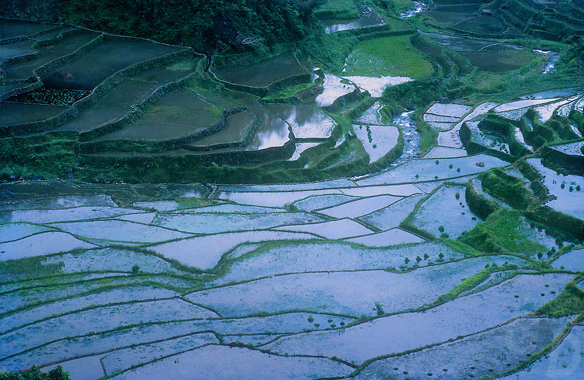 Banaue Rice Terraces, Mountain Province, Philippines