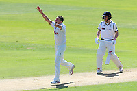 Peter Siddle of Essex celebrates taking the wicket of Jack Leaning during Essex CCC vs Yorkshire CCC, Specsavers County Championship Division 1 Cricket at The Cloudfm County Ground on 4th May 2018