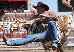 Steer Wrestling at Cheyenne Frontier Days Rodeo