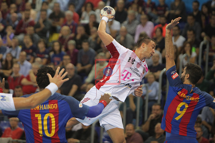 VELUX EHF <br /> 2016/17 EHF Men's Champions League Group Phase - Round 5.<br /> FC Barcelona Lassa vs Telekom Veszprem: 26-23.<br /> Momir Ilic vs Raul Entrerrios.