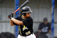 10 September 2011: Rashid Gerard of L&D Amsterdam Pirates is seen at bat during game 4 of the 2011 Holland Series won 6-2 by L&D Amsterdam Pirates over Vaessen Pioniers, in Amsterdam, Netherlands.
