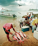 CAYMAN ISLANDS, Grand Cayman, fishermen cutting and selling red snapper by the Caribbean Sea