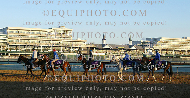 Four Breeders' Cup entrants from Trainer Patrick Biancone make their way in formation onto the track at Churchill Downs in Louisville, Kentucky on Friday morning 11/3/06. In order (L-R) Gorella, Mauralakana, Asi Siempre and Her Majesty. Photo By Bill Denver/EQUI-PHOTO..