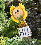 Scarecrow Festival at Kettlewell in Yorkshire 2013<br /> <br /> Sunflower on a stick says Hi! <br /> <br /> Scarecrows are made by local community and places in and around their front gardens.  Competition is fierce but it's all to raise money  for the local church  and other local projects to benefit the whole community.<br /> <br /> <br /> <br /> Picture by Gavin Rodgers/ Pixel 8000 <br /> <br /> 07917221968