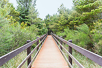 Boardwalk to wildlife sanctuary.  Oregon State Parks.  Astoria, Oregon