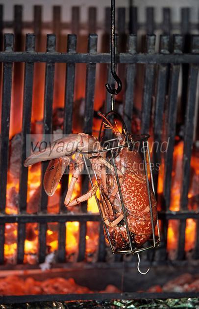 """Europe/France/Bretagne/29/Finistère/Benodet: Restaurant """"La Ferme du Letty"""" - Les homards à la broche de J. -M. Guilbaud"""
