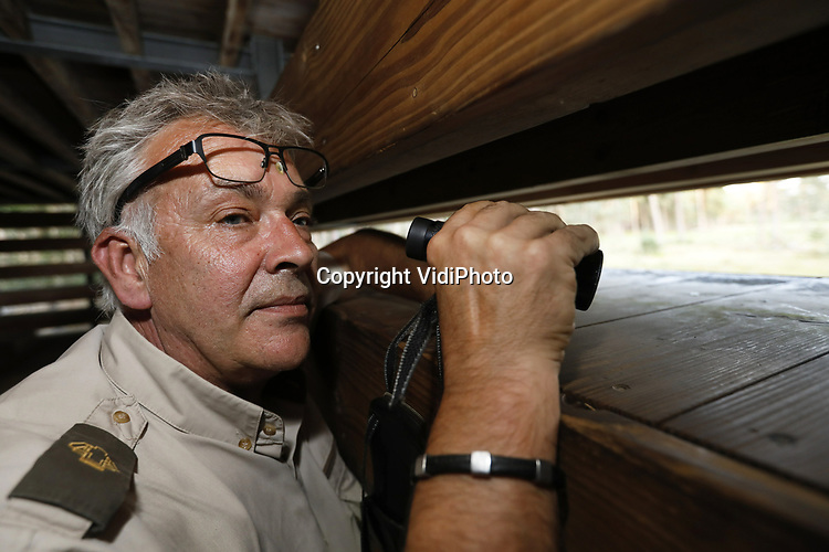Foto: VidiPhoto<br /> <br /> OTTERLO – De eerste amateur- en natuurfotografen, alsmede wildliefhebbers, verzamelen zich inmiddels langs de Wildbaanweg op Nationaal Park de Hoge Veluwe. Begin september begint de bronsttijd en kunnen er foto's gemaakt worden van burlende en parende herten. Boswachter Henk Ruseler van het park en zijn collega jachtopzieners houden scherp in de gaten dat massaal toegestroomde publiek straks niet de regels overtreedt en de rustplekken van de dieren verstoort.