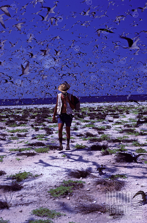 Biologist David Woodside walking through sooty tern colony on Jarvis Island