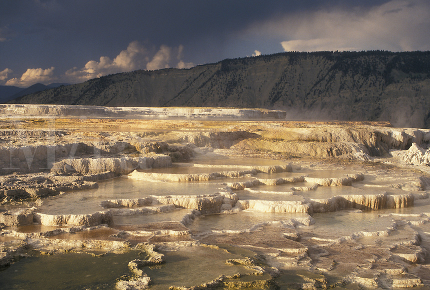 Mammoth Hot Springs, Yellowstone National Park, WY, Wyoming, Canary Springs, a terrace-like formation created by limestone deposits, at Mammoth Hot Springs in Yellowstone Nat'l Park in Wyoming.
