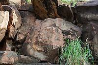 Hawaiian petroglyphs of human figures, Olowalu, Maui