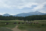 horseback, ride, riders, horse, recreation, outdoor, activity, American West, scenic, landscape, Upper Beaver Meadows, Longs Peak, Rocky Mountain National Park, Colorado, USA