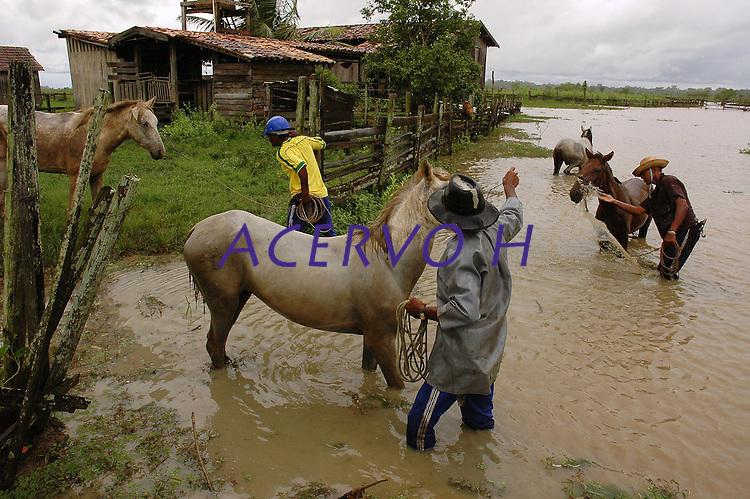 Vaqueiro leva gado para o curral, fazenda Tuiuiu.<br /> Cachoeira do Arari, Pará, Brasil.<br /> 05/2006<br /> Foto Paulo Santos/Interfoto