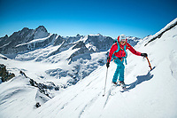 Climbing the Wetterhorn, a beautiful peak towering above Grindelwald, Switzerland, that requires glacier travel on the Rosenlauigletscher to the final short climb to the summit.