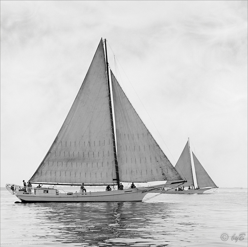 "Chesapeake Bay workboat ""Rosie Parks"", Queen of the fleet, unmatched in beauty or speed sails to victory in the 1967 Deal Island Skipjack race. Photograph from the restored Limited Edition Skipjack print in the Fine Art ""Skipjack Sunday"" collection.  Also available in sepia."